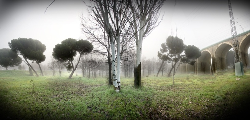 Bastogne 002. La niebla cae de nuevo y continúa el camino. Segunda imagen de la serie Bastogne
