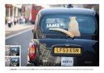 iams - Street Marketing - comunica2punto0