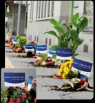 zurich friday - street marketing - comunica2punto0